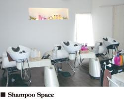 Shampoo Space